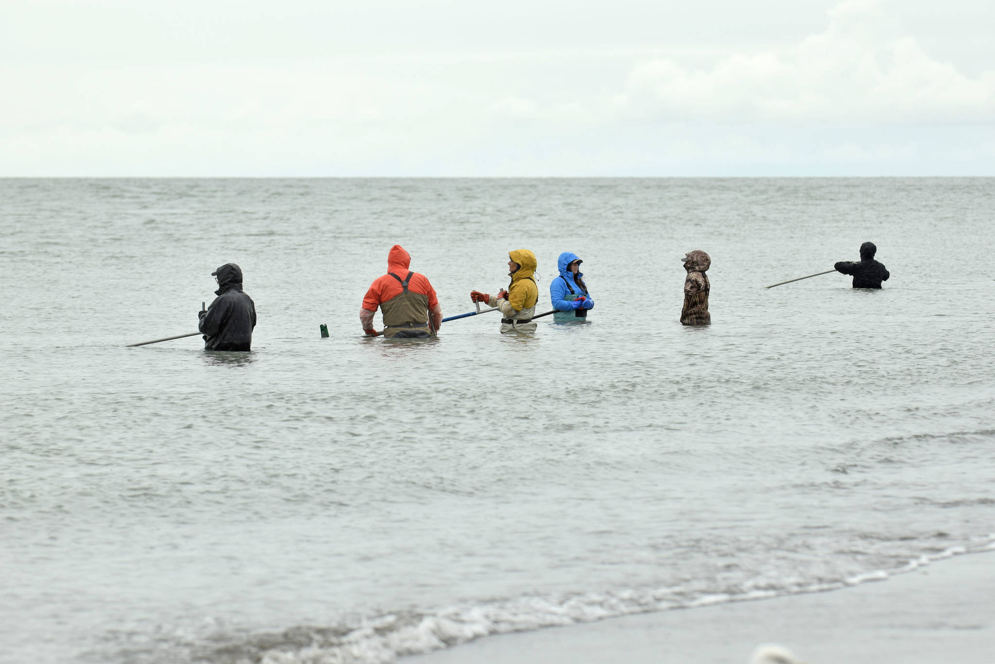 Dipnetters wade into the Cook Inlet in hopes of catching salmon on the first day of dipnetting season on Tuesday, July 10, 2018, in Kenai, Alaska. (Photo by Erin Thompson/Peninsula Clarion)
