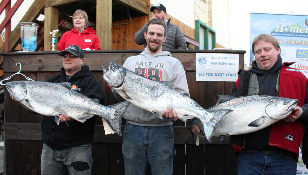 The top three winners in Homer's 23rd Annual Winter King Salmon Tournament show off their fish to the crowd. (Left to right) Colt Belmonte placed third for a 24.8 pound king, winning $16,588; Kelly Grose won $21,112 for his 25.25 pound king and Eric Holland took first place with his 26.45 pound king. Holland's prize of $31,668 was more than the 2015 tournament's first place prize. All the anglers are Homer residents. (Photo by Anna Frost, Homer News)