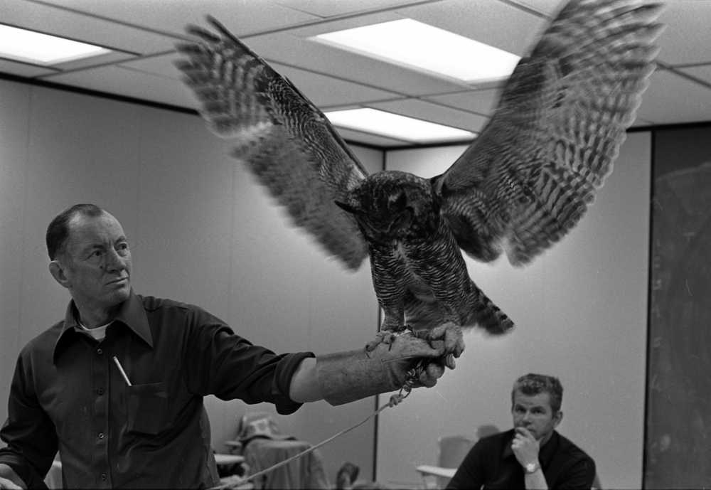 Photo courtesy UAA Consortium Library In this 1975 photo, Kenai Peninsula College professor Boyd Shaffer holds an owl at the college in Soldotna, Alaska. Shaffer, who was known for his love of art and nature, died June 25 at 90.