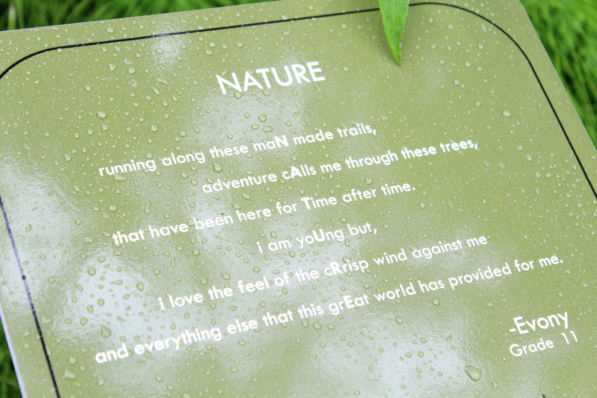 """The poem """"Nature"""" is displayed on a sign Saturday, July 1, 2017 on the trail at Kenai Municipal Park in Kenai, Alaska. The sign is one of 12 along the trail displaying the winning poems about nature chosen from 86 entries in the Pathways of Poetry project, spearheaded by the Kenai Parks and Recreation Department and Kenai Community Library. (Photo by Megan Pacer/Peninsula Clarion)"""