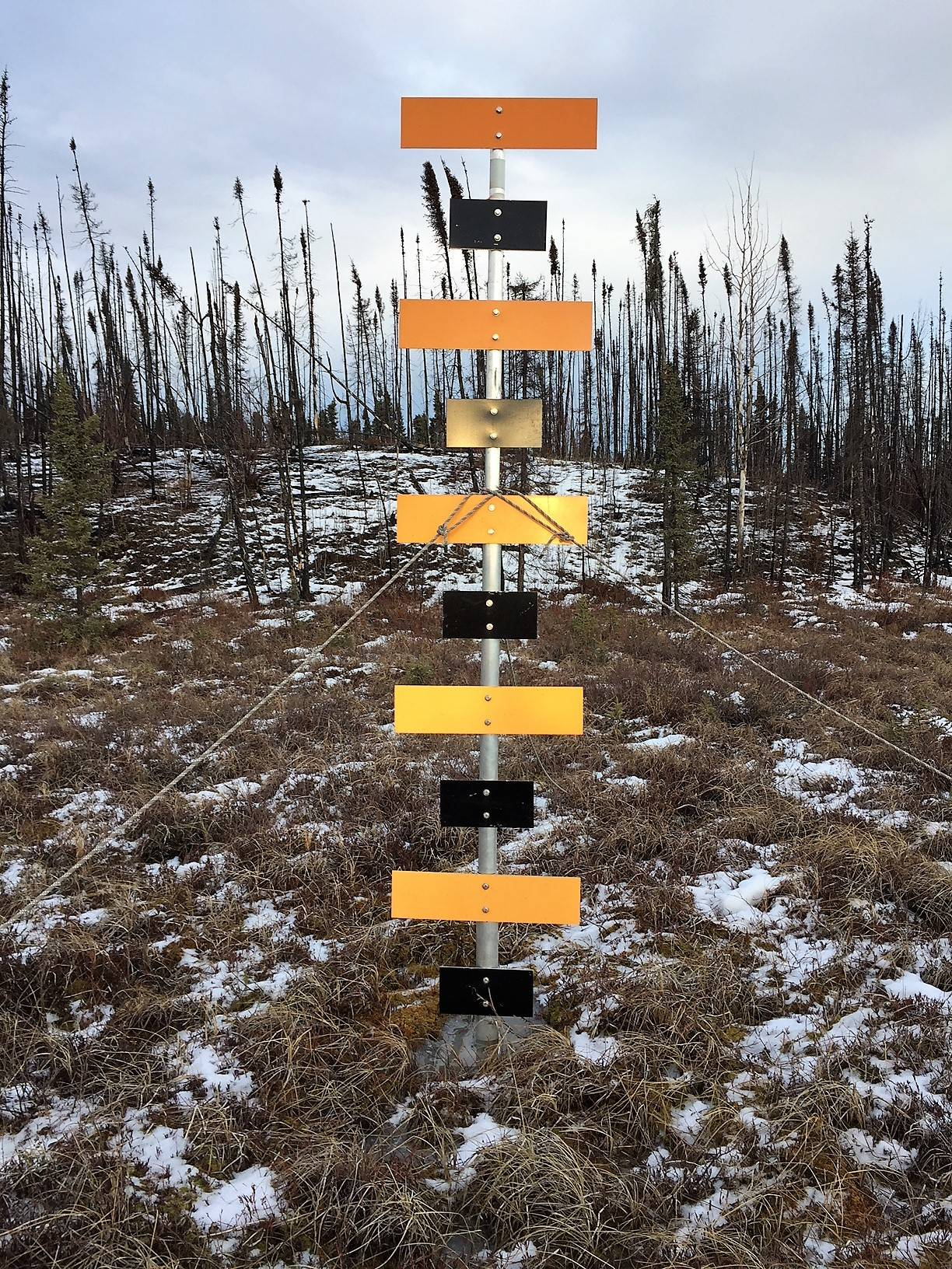 One of the aerial markers used to monitor snow depth on the Kenai National Wildlife Refuge. (Photo courtesy Kenai National Wildlife Refuge)