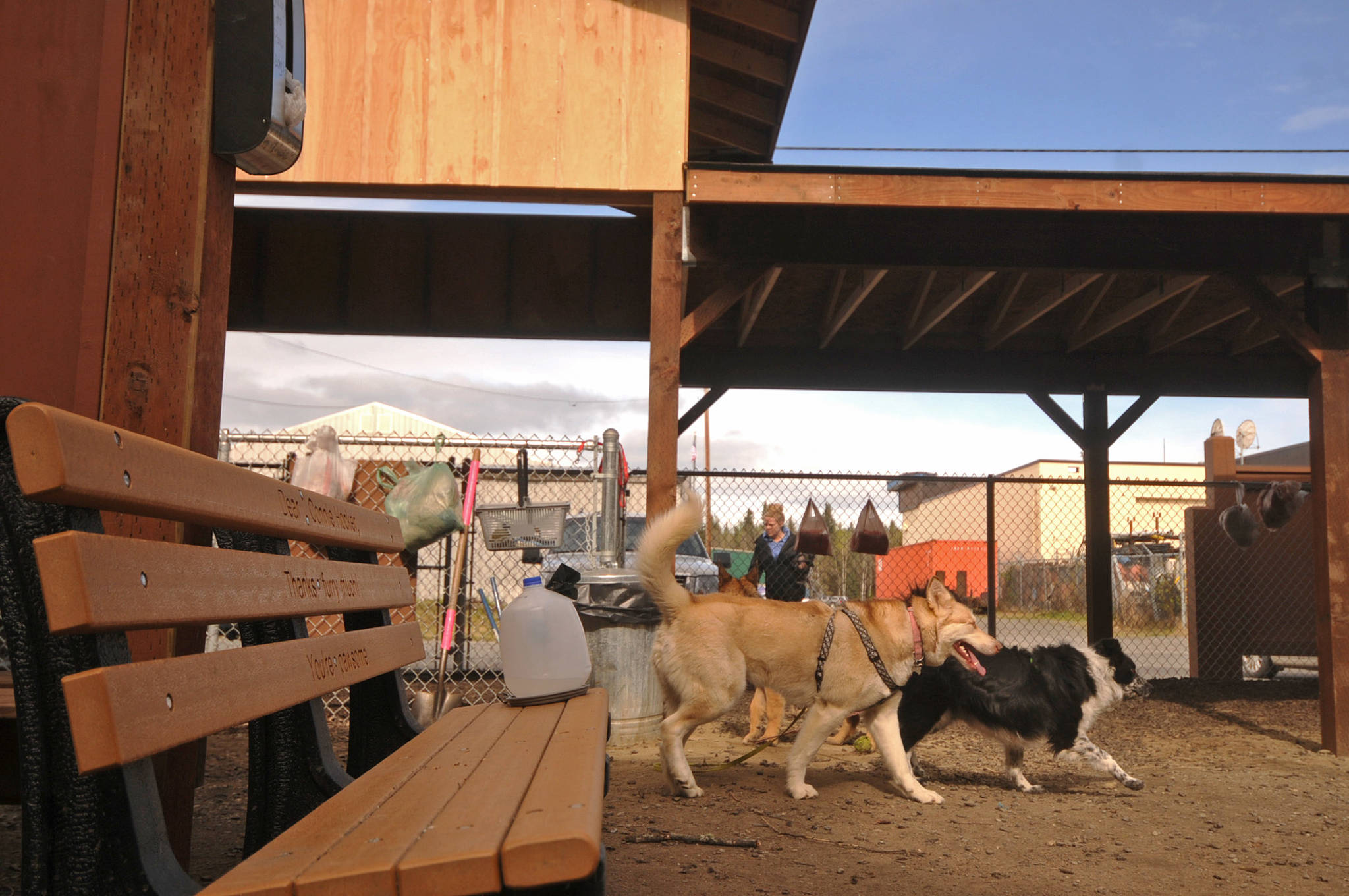 Dogs trot around the 3 Friends Dog Park on Monday, May 21, 2018 in Soldotna, Alaska. (Photo by Elizabeth Earl/Peninsula Clarion)