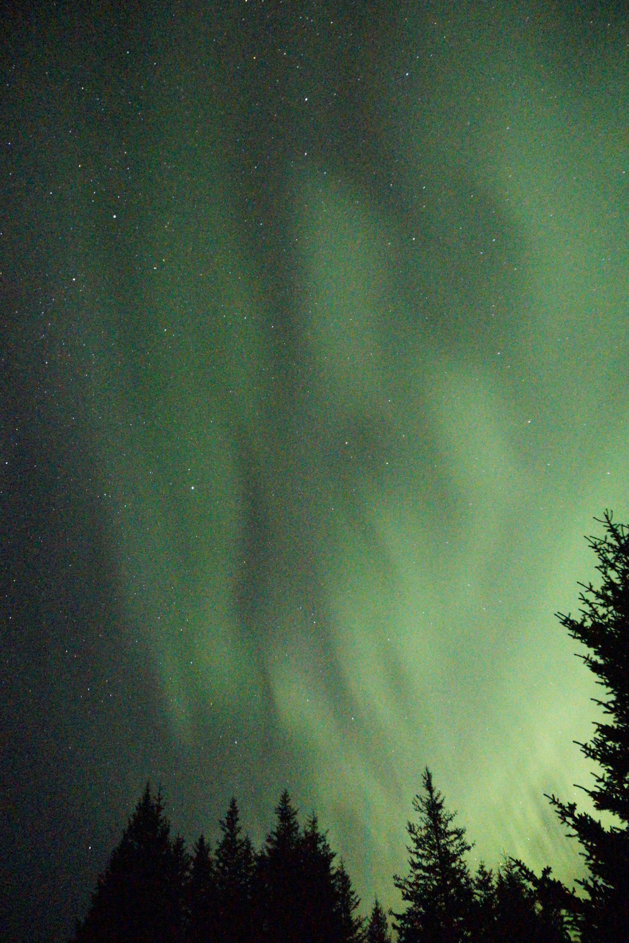 Northern lights glow about 2:30 a.m. Tuesday, Sept. 11, 2018, over Diamond Ridge near Homer, Alaska. At times the aurora spread in a long arc from east to west. (Photo by Michael Armstrong/Homer News)