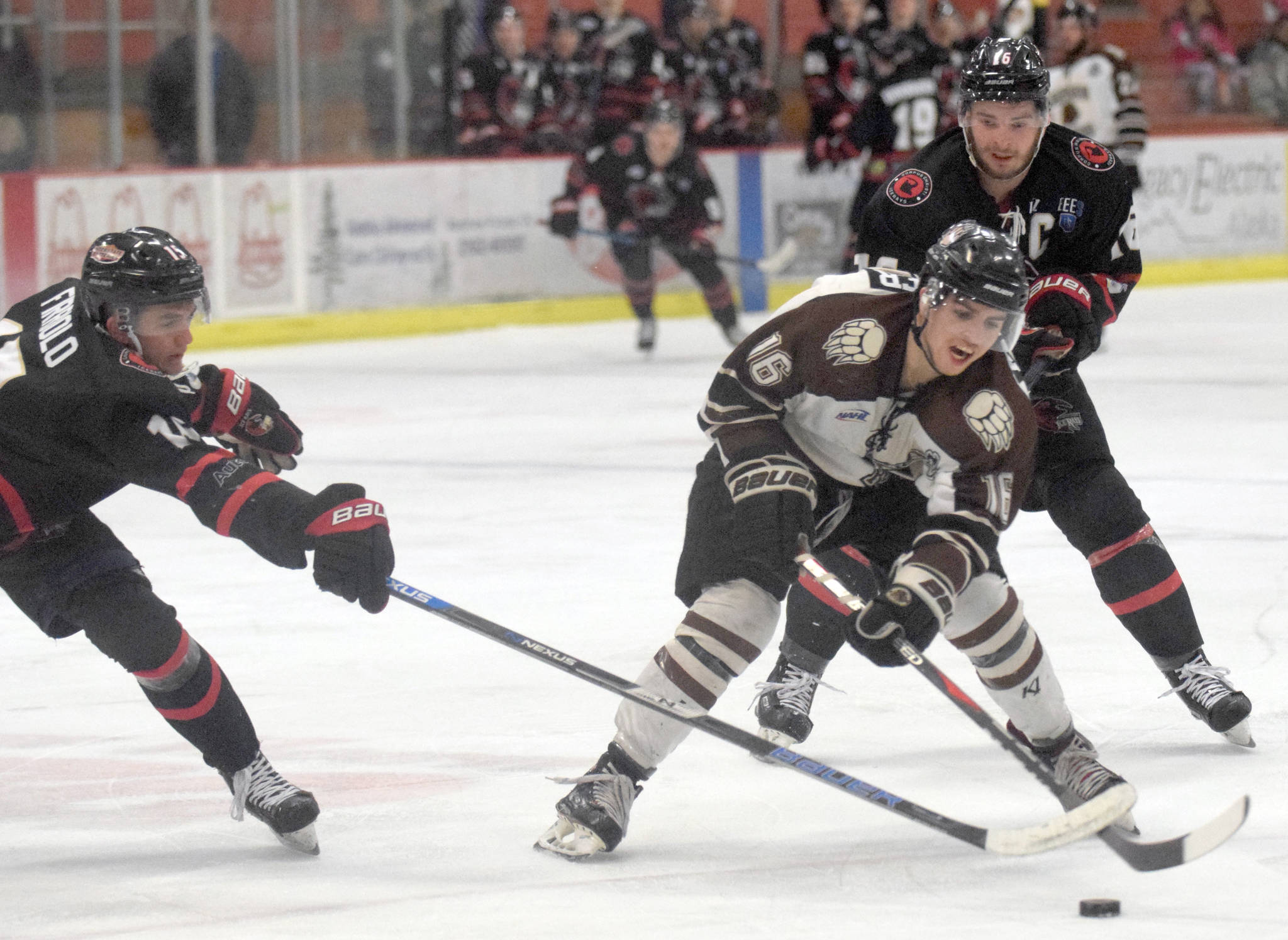Brown Bears forward Andy Walker carries the puck between Corpus Christi's Anthony Firriolo and Kyle Moore on Friday, Feb. 8, 2019, at the Soldotna Regional Sports Complex. (Photo by Jeff Helminiak/Peninsula Clarion)