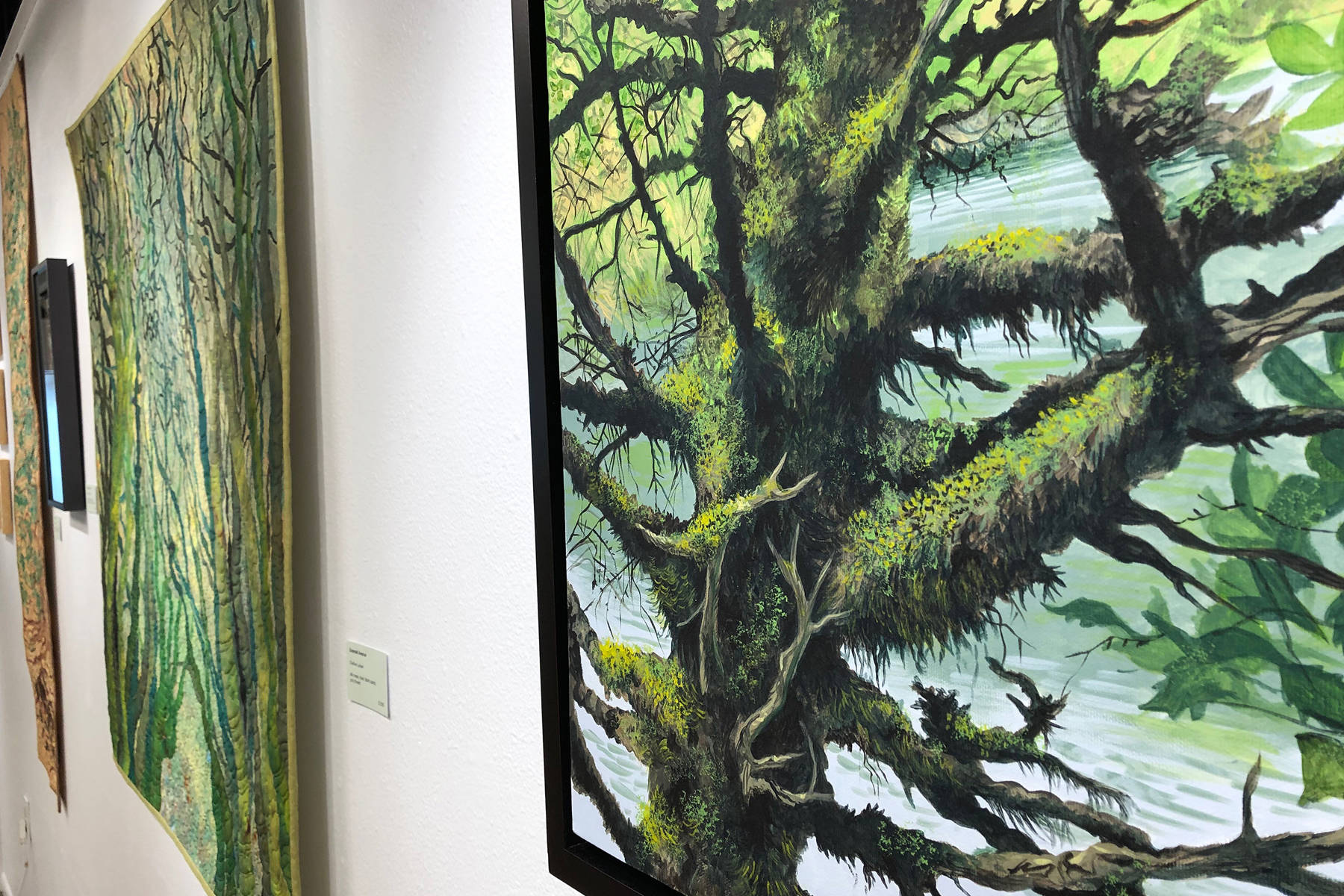 Larsen brings love of forest, trees to life in July exhibit