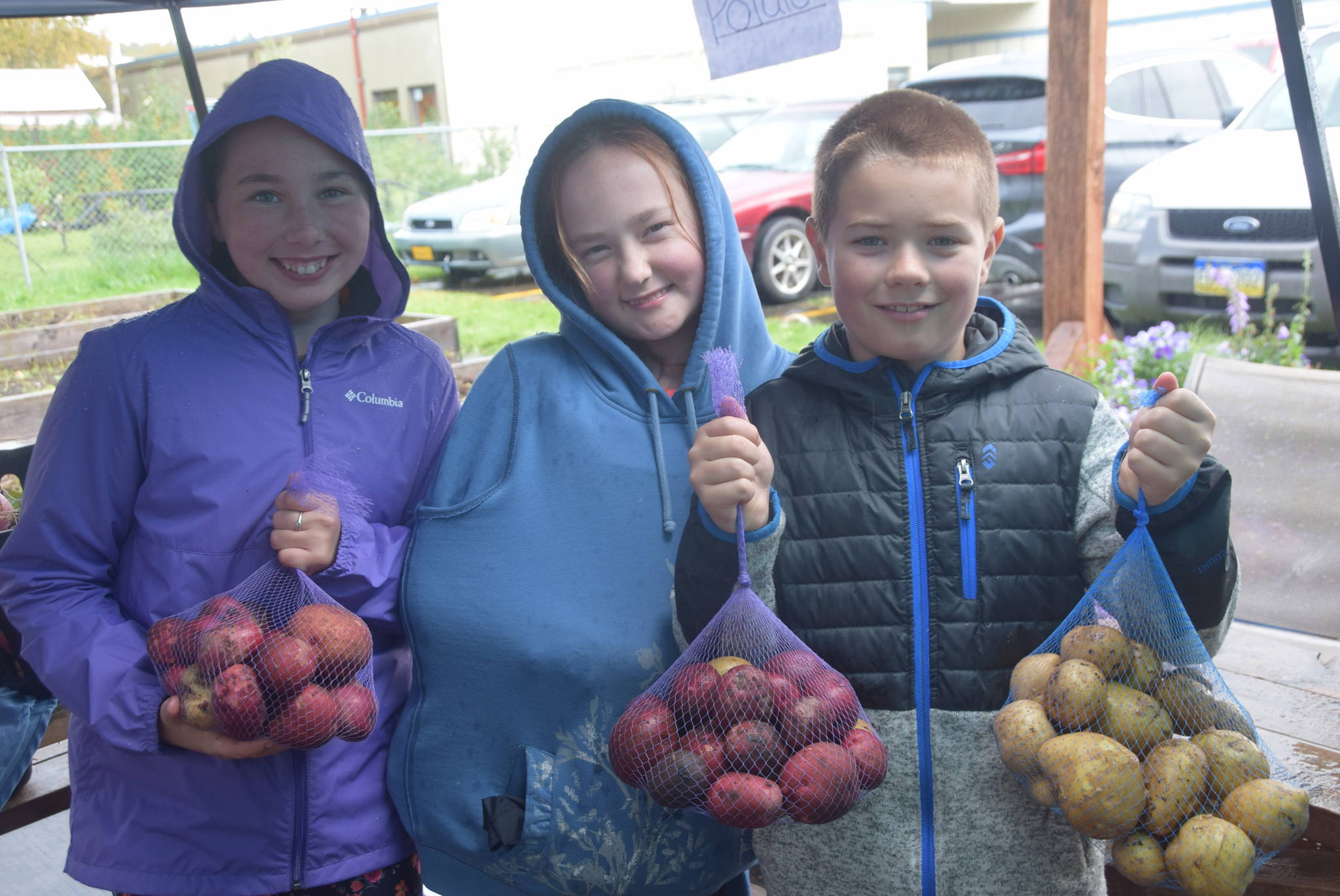 From left, Kendra Bailey, Emma McKay and Tristen Barnes show off their potatoes at the Montessori Farmer's Market at the Soldotna Montessori School on Sept. 13, 2019. (Photo by Brian Mazurek/Peninsula Clarion)