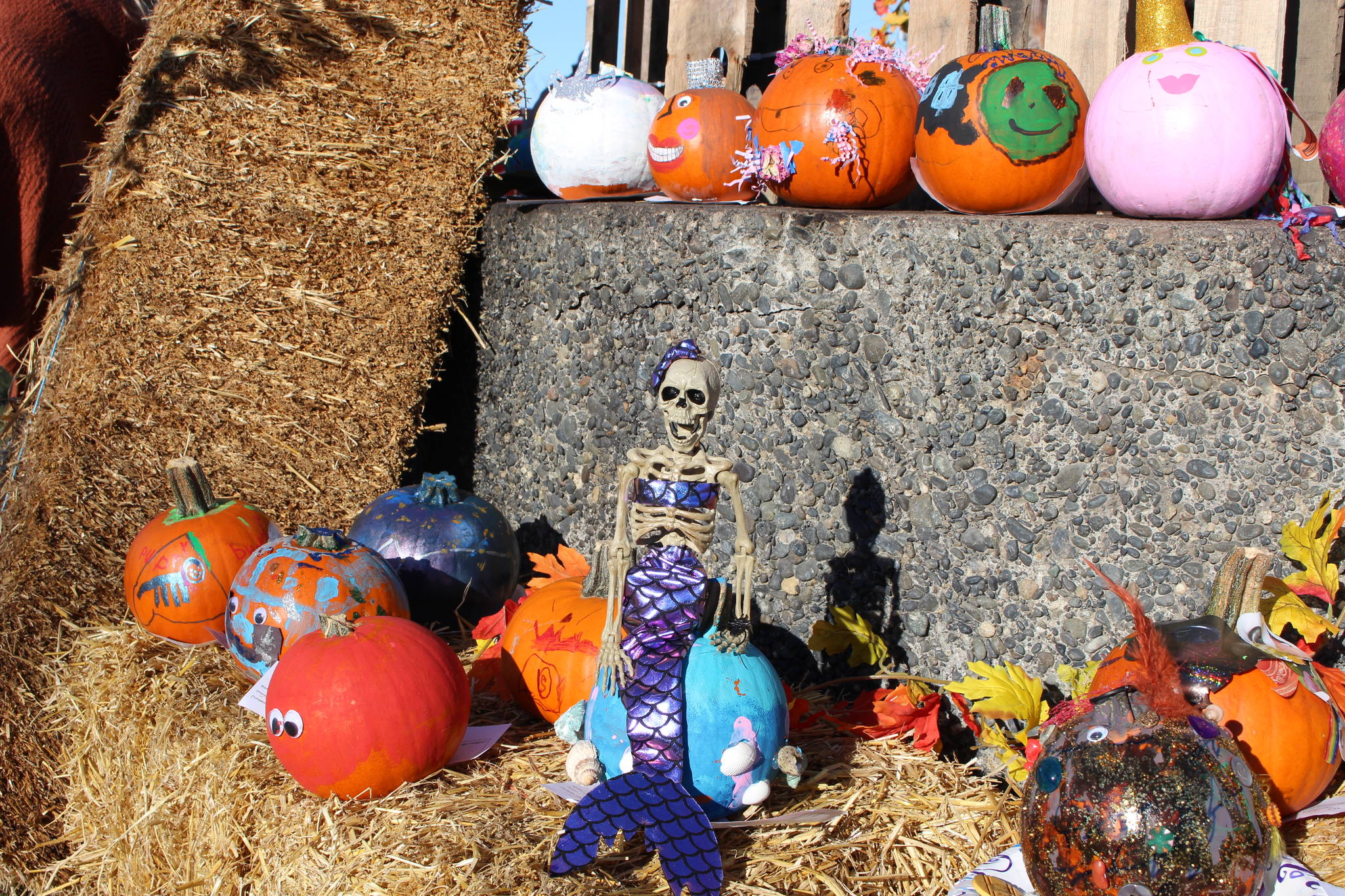 Some of the pumpkins submitted to the pumpkin decorating contest are seen here during the 5th annual Kenai Fall Pumpkin Festival in Kenai, Alaska on Oct. 10, 2020. (Photo by Brian Mazurek/Peninsula Clarion)
